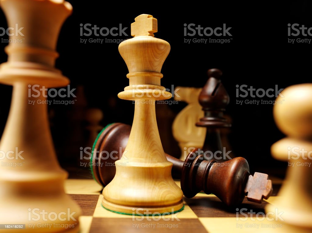 Two Chess Kings royalty-free stock photo