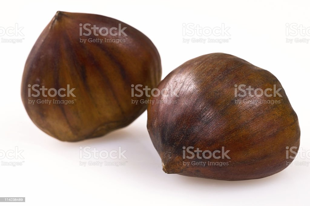 Two chestnuts against a white background royalty-free stock photo