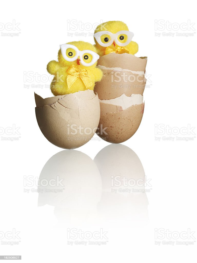 Two chick in stacks of shells royalty-free stock photo