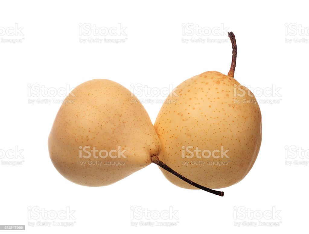 Two chinese pears stock photo