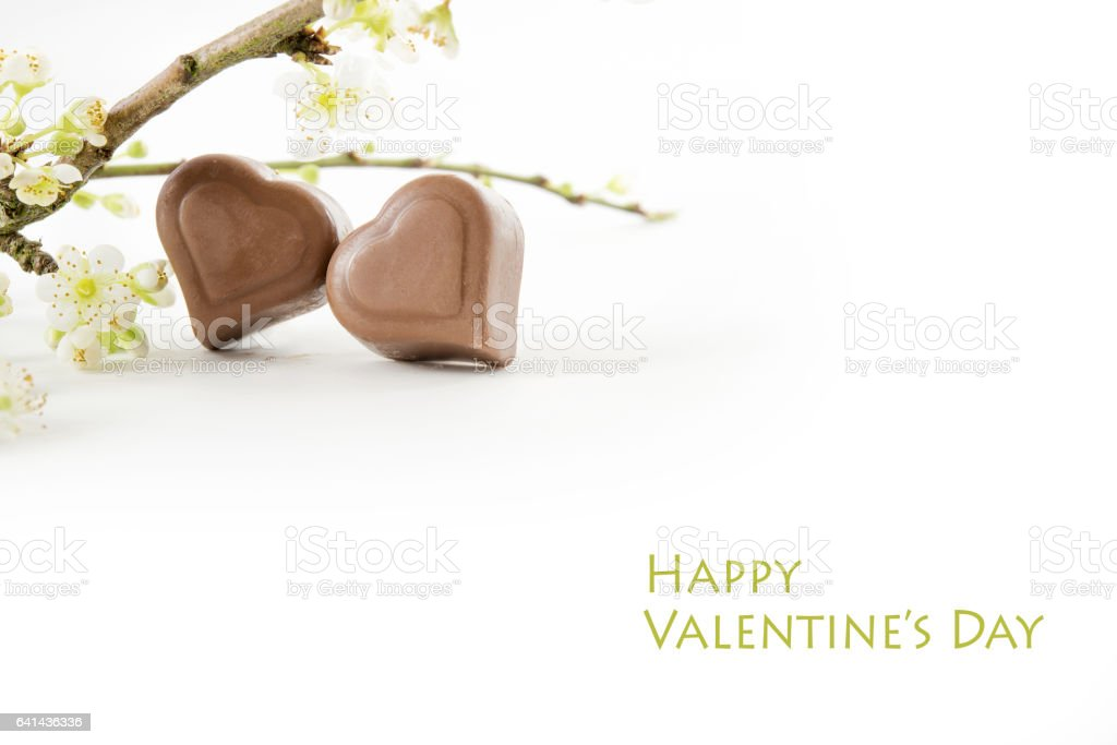 Two chocolate hearts and flowering branches, text Happy Valentine's Day stock photo