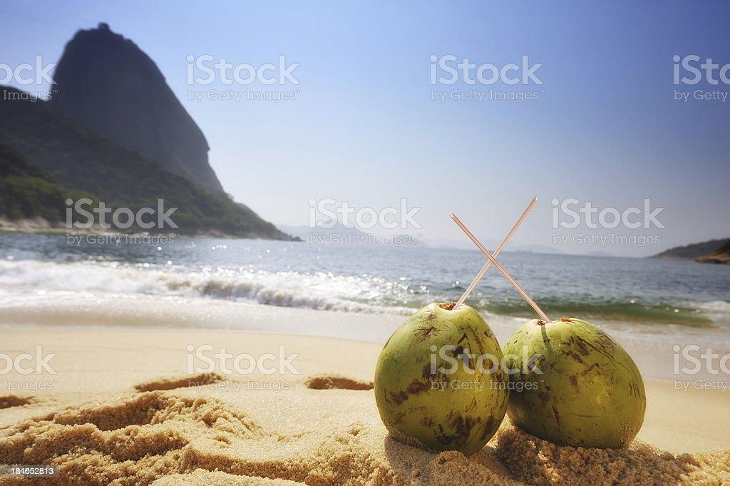 Two Coconuts on the beaches of Rio de Janeiro stock photo