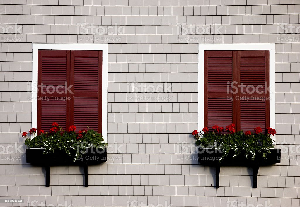 Two colorful windows with closed shutters royalty-free stock photo
