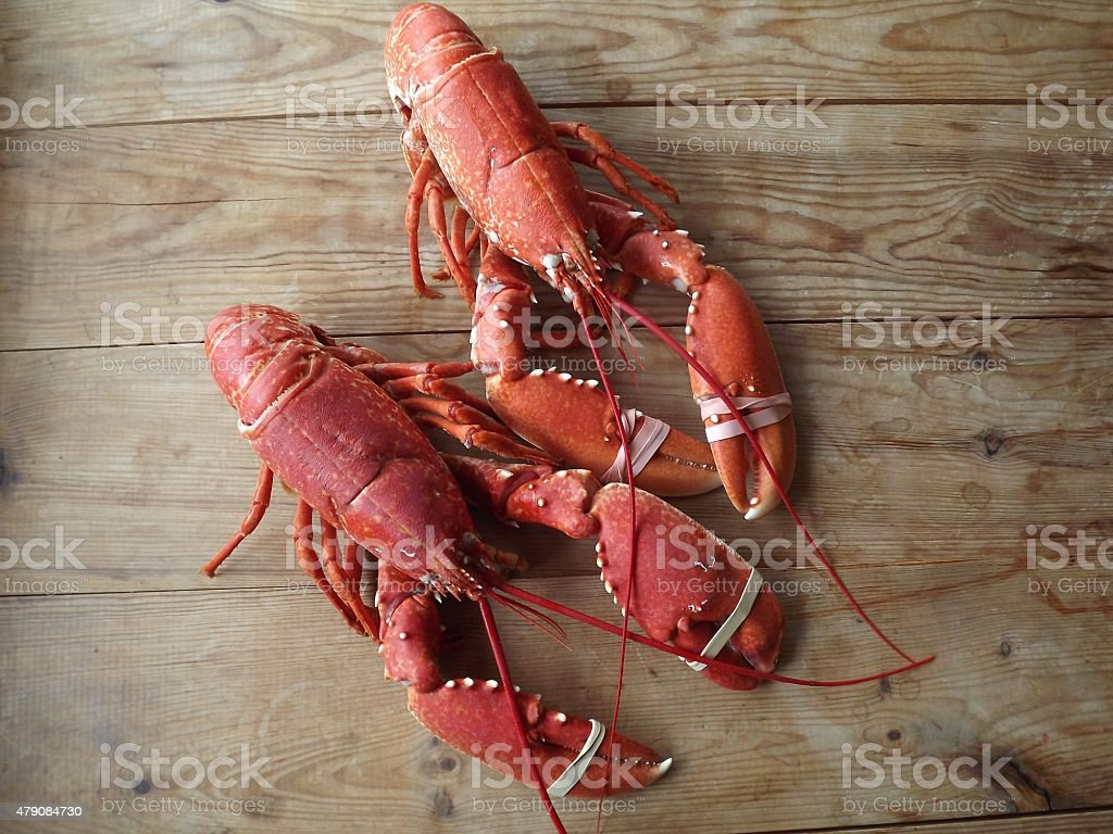 Two Cooked Native Lobsters stock photo