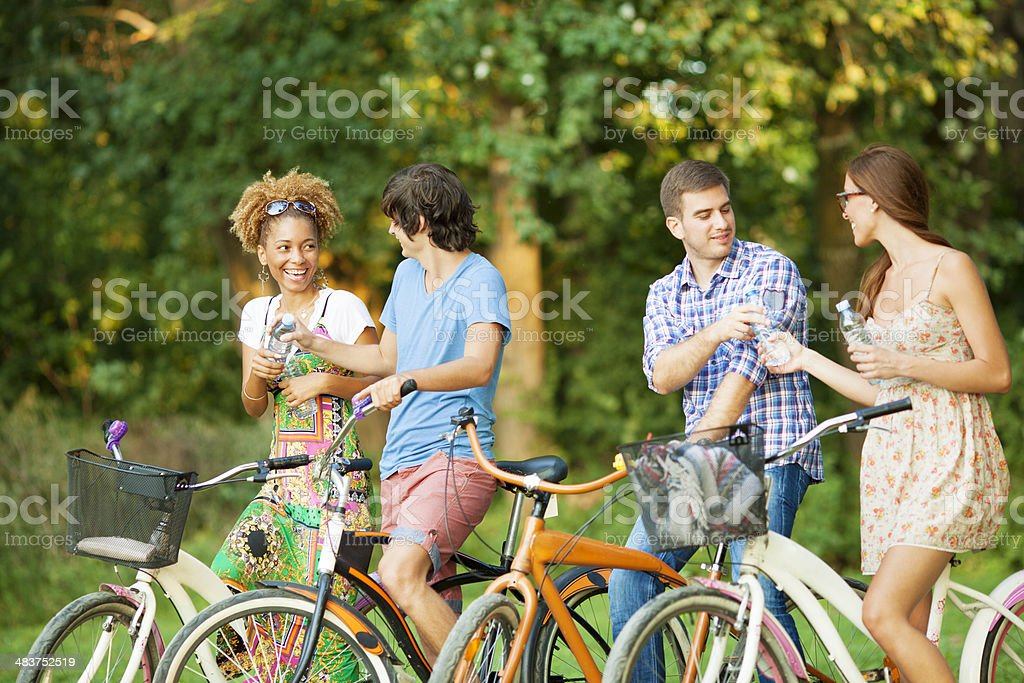 Two couples in a park with bicycles royalty-free stock photo