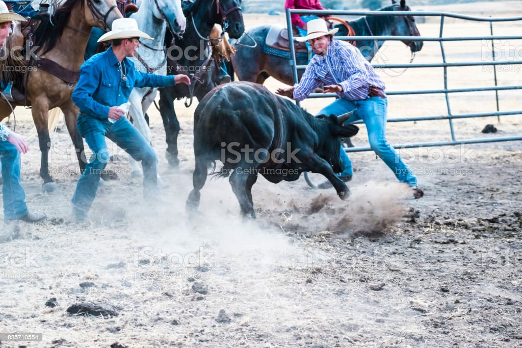 Two Cowboys Jump As A bull Runs At Them In A Corral stock photo