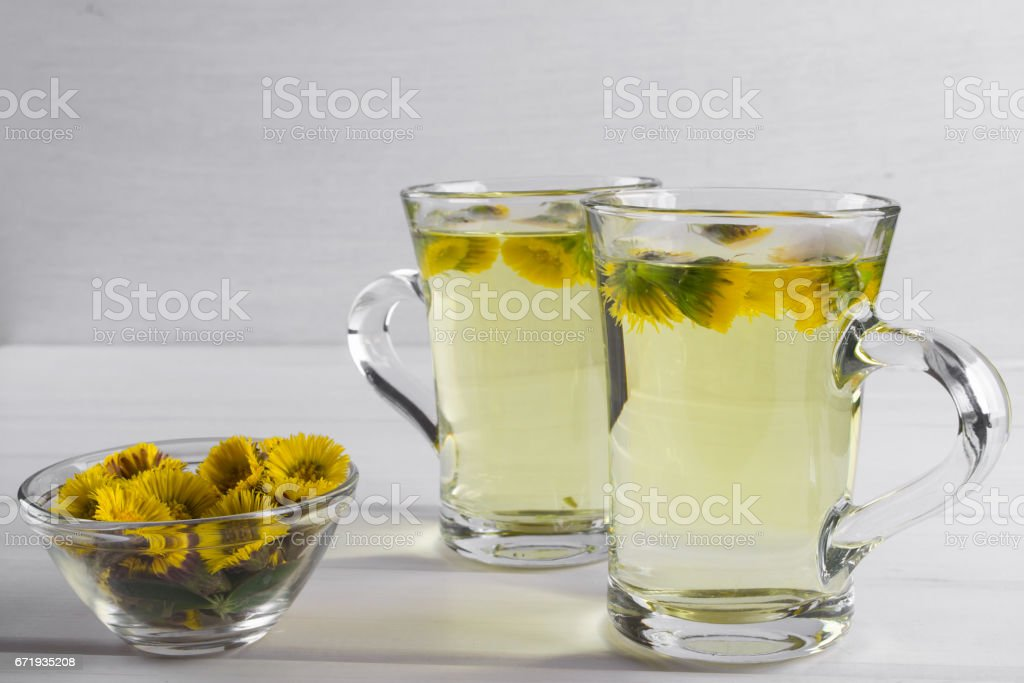Two cups of herbal tea with coltsfoot (or Tussilago) flowers stock photo
