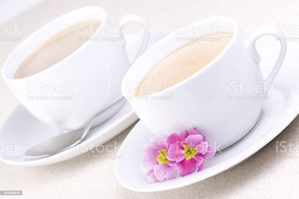 Two Cups royalty-free stock photo