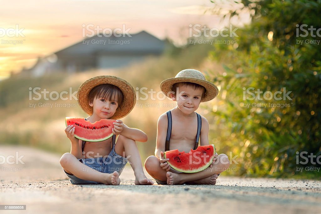 Two cute little boys, eating watermelon stock photo