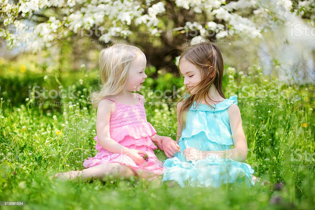 Two cute little sisters in blooming cherry garden stock photo