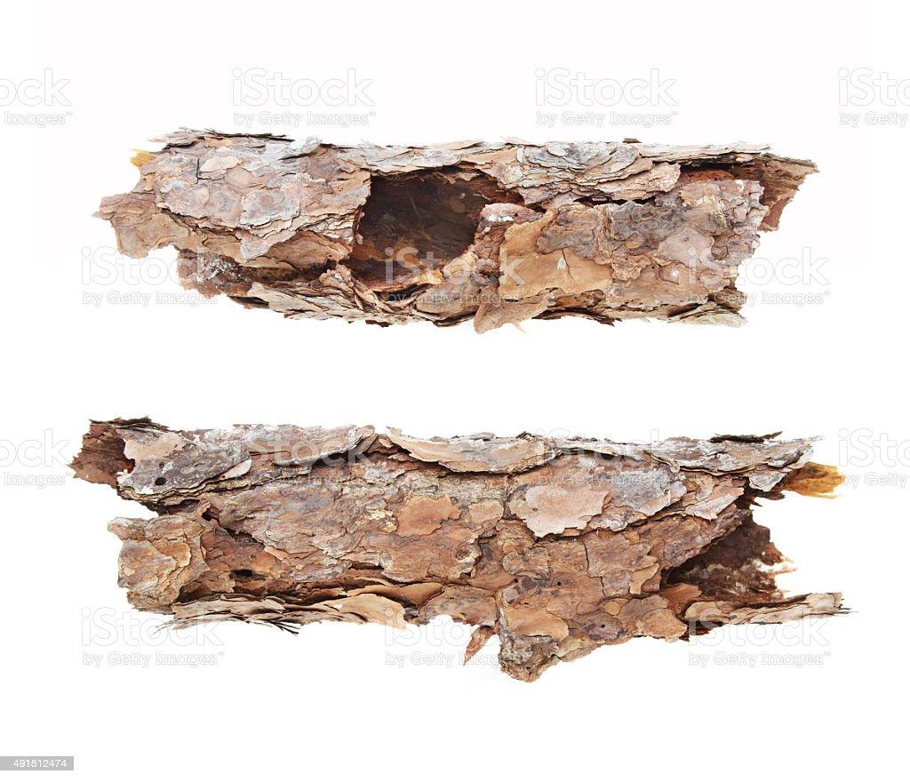 Two dead rotten logs stock photo