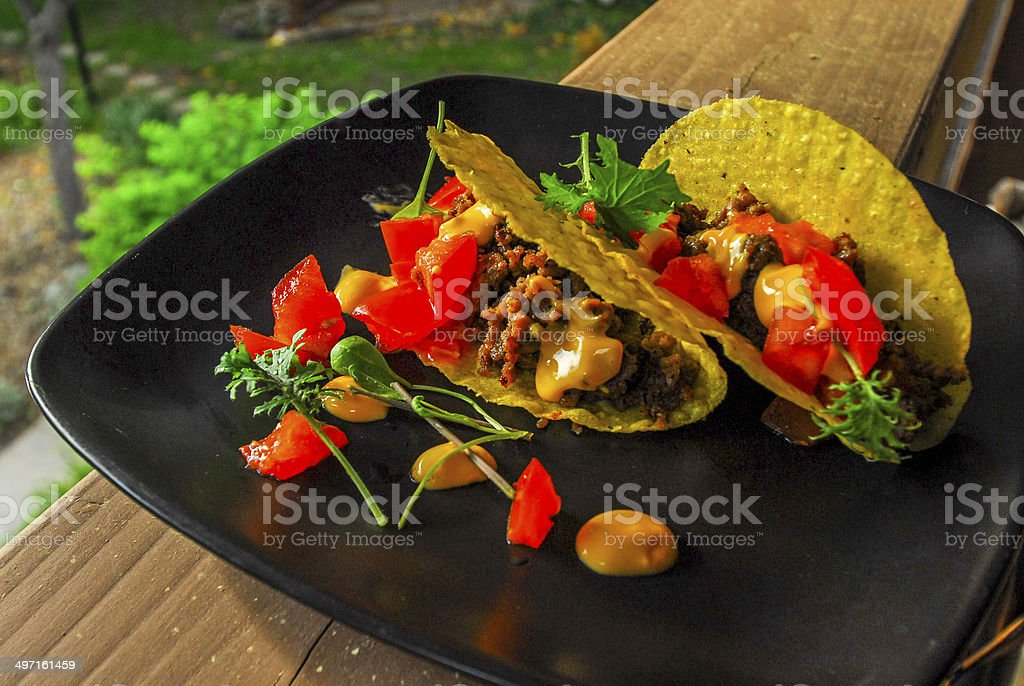 Two Delicious Plated Mexican Beef Tacos royalty-free stock photo