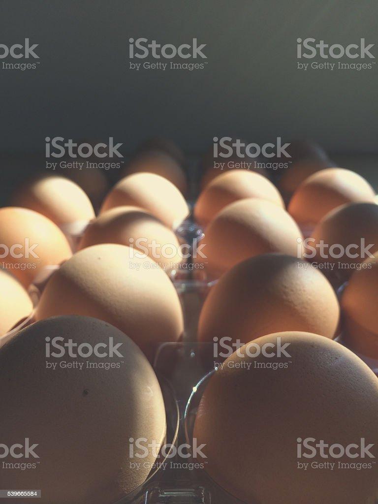 Two Dozen Eggs stock photo