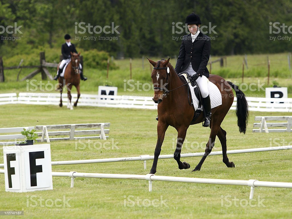 Two Dressage Rings stock photo