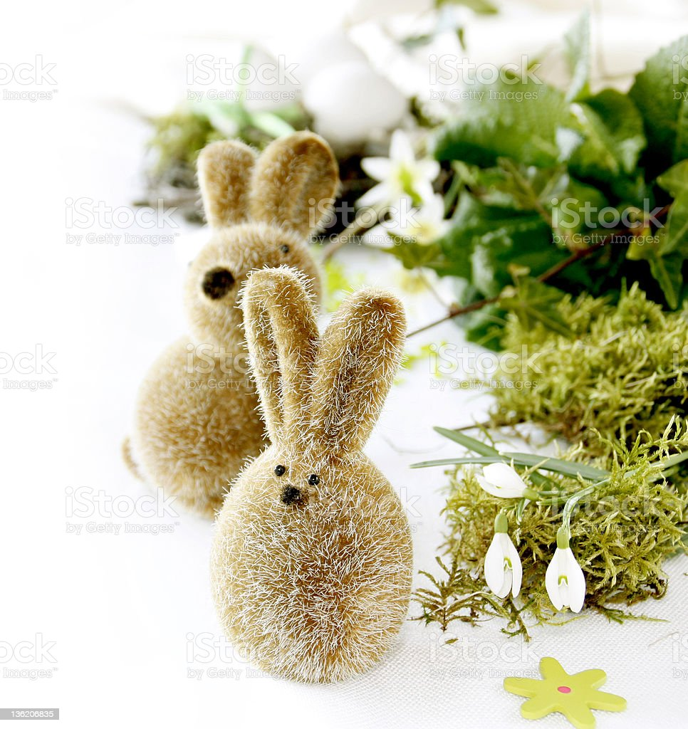 Two Easter Bunnies royalty-free stock photo