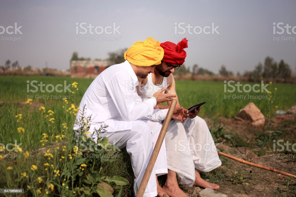 Two farmer discussion something in the field stock photo