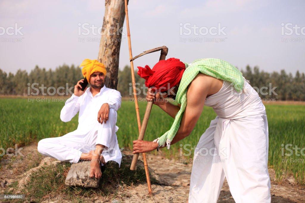 Two farmer working in the field portrait stock photo