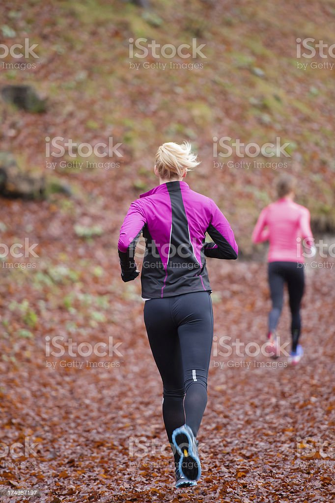 Two female athletes jogging in the forest royalty-free stock photo