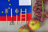 Two flags of the EU and Russia close to fruits