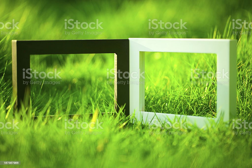 Two Frames on Grass royalty-free stock photo