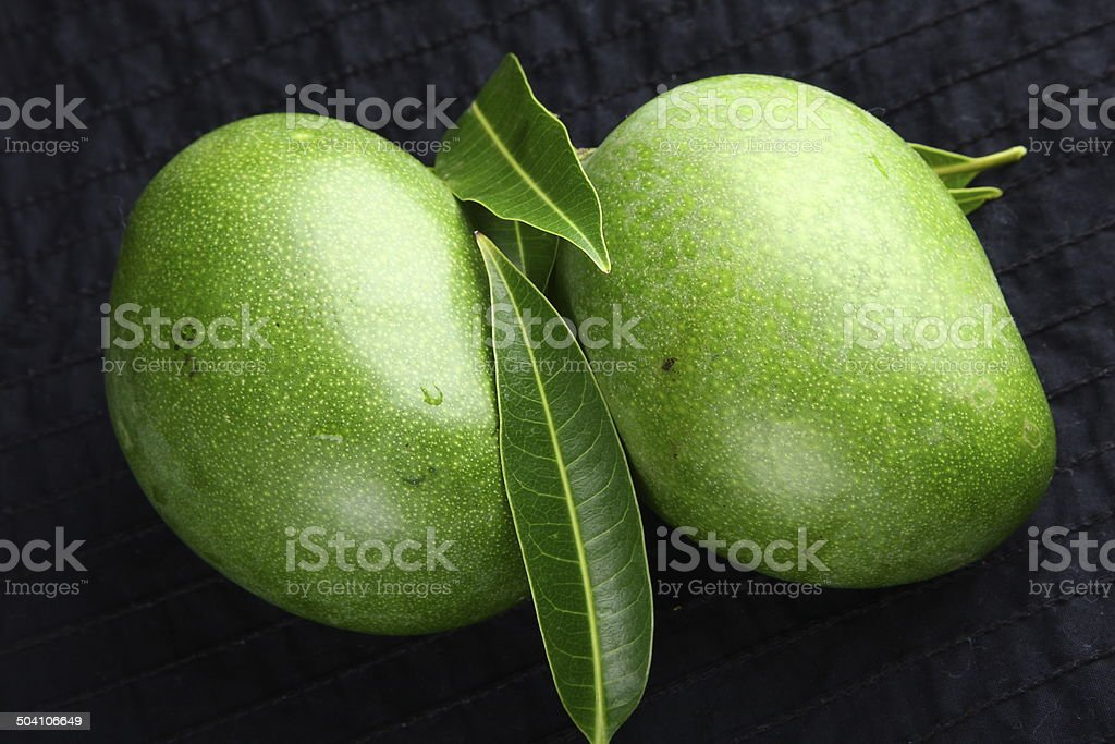 Two Fresh Ggreen mangoes stock photo