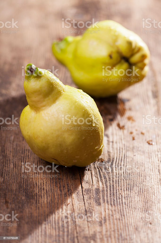 two fresh quinces stock photo