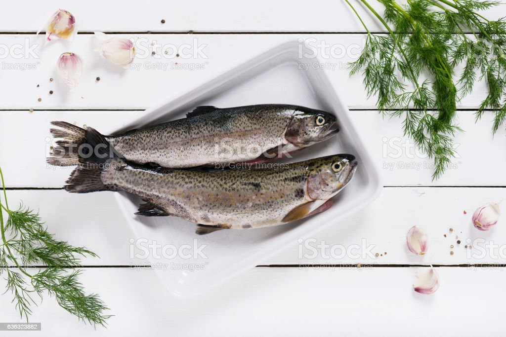 Two fresh rainbow trout on a white plate. stock photo