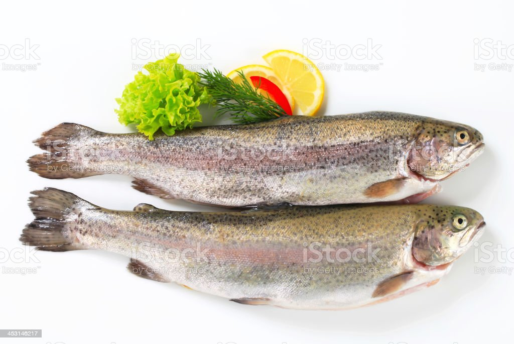 Two fresh trout royalty-free stock photo