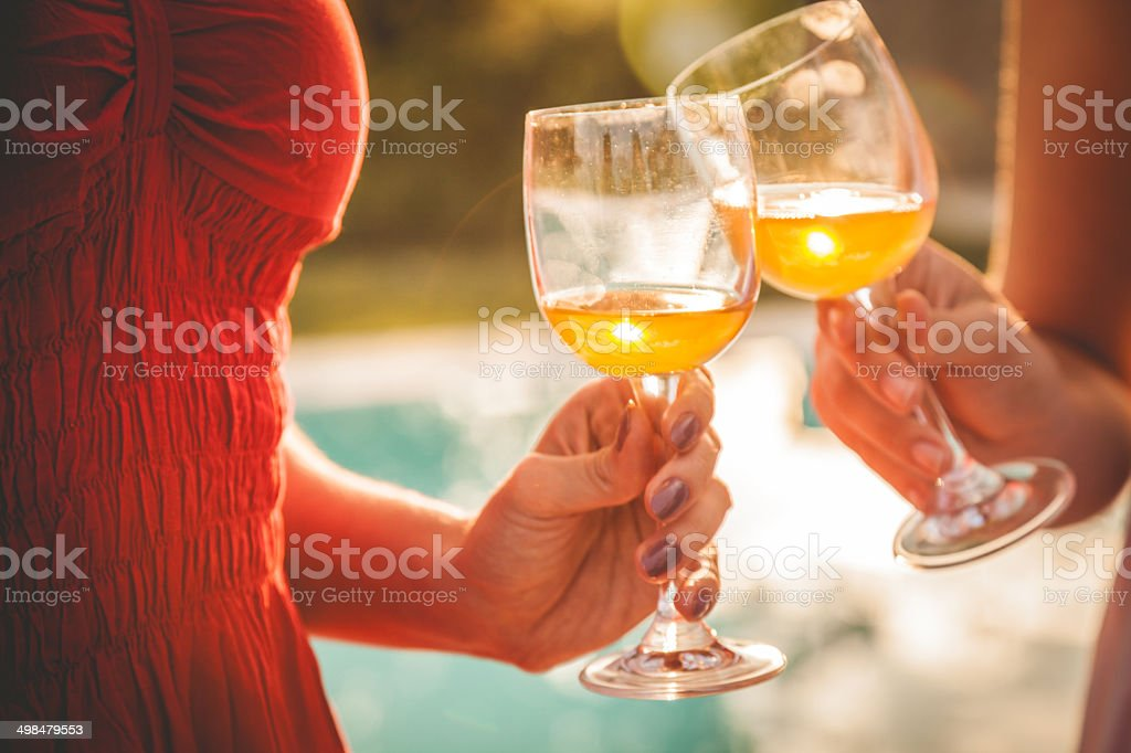 Two friends toasting at birthday party royalty-free stock photo
