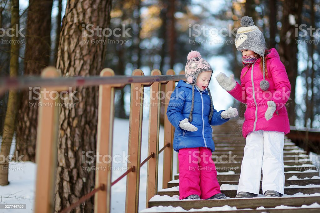 Two funny adorable little sisters having fun in winter park stock photo