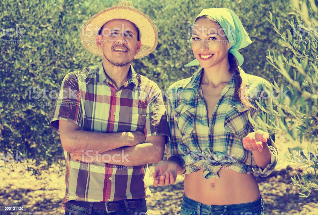 Two  gardeners standing together among olive trees stock photo