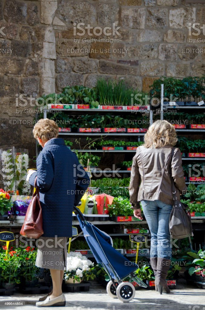 Two Generations Shop the Farmers Market in San Gimignano, stock photo