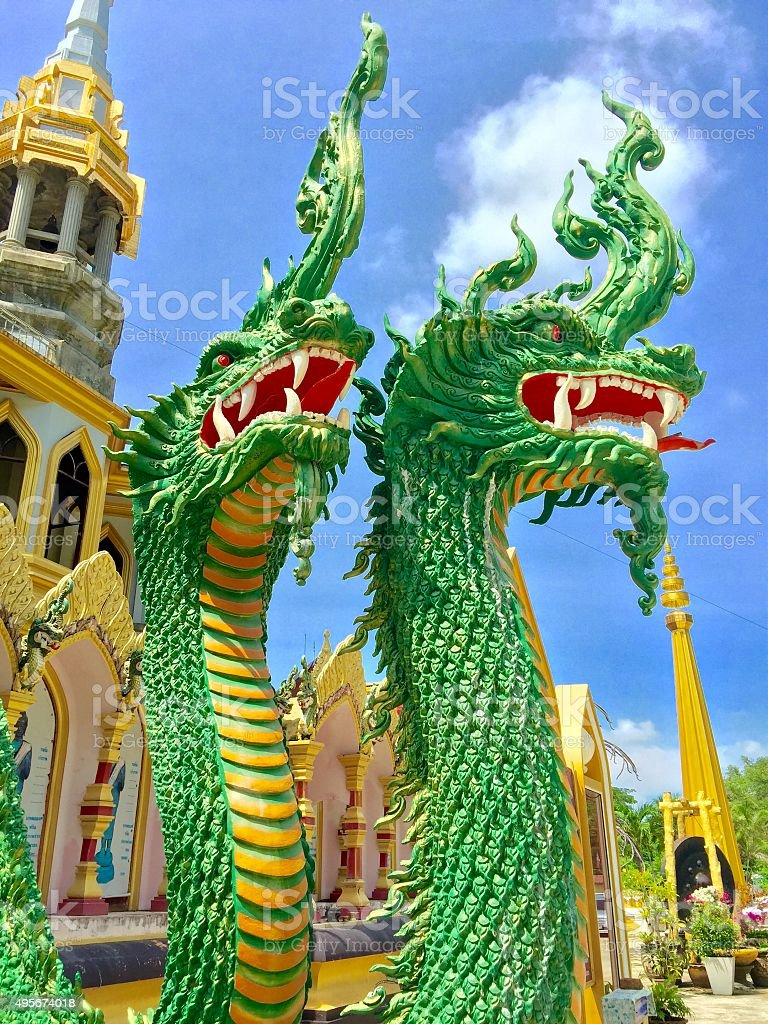 Two Giant Snakes stock photo