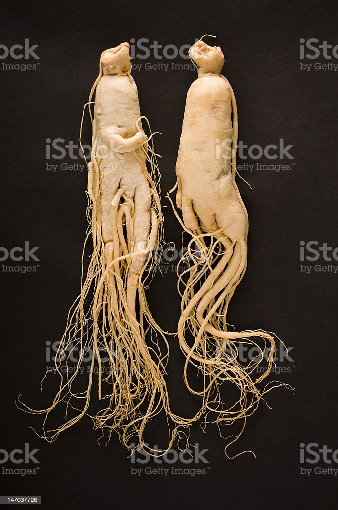 Two ginseng roots on a black background royalty-free stock photo