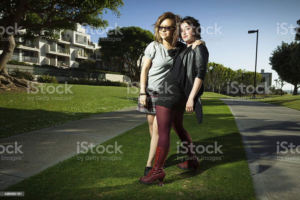 Two Girl Friends Posing royalty-free stock photo