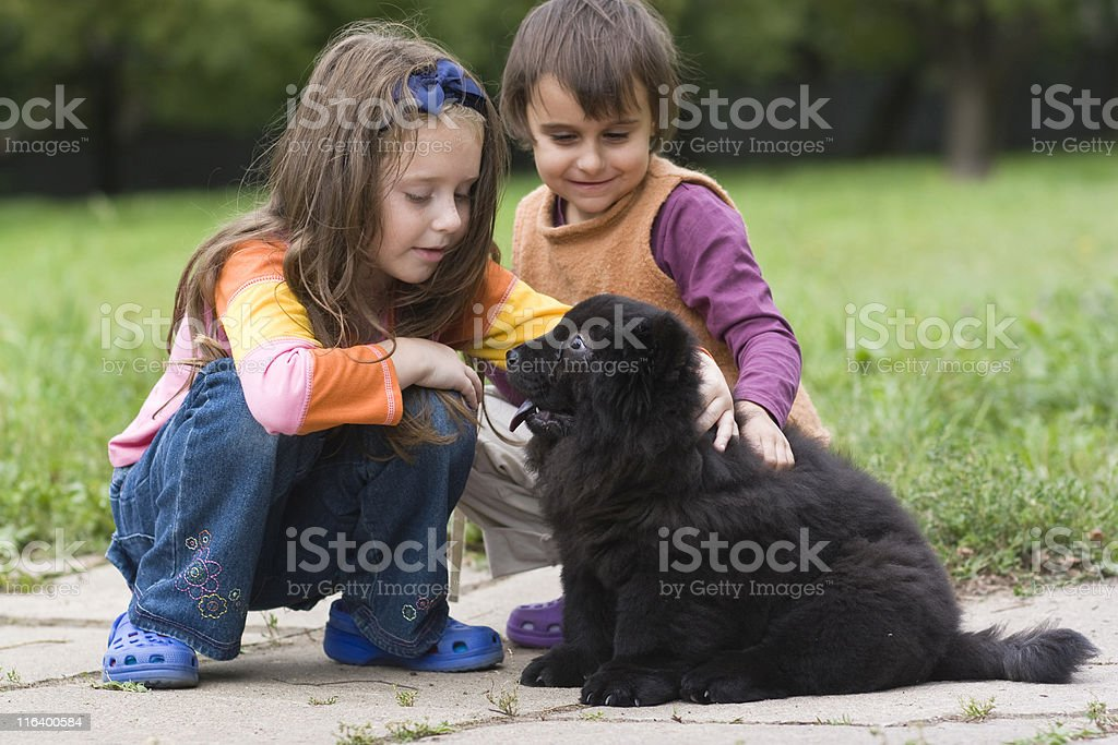 two girls and chow-chow stock photo
