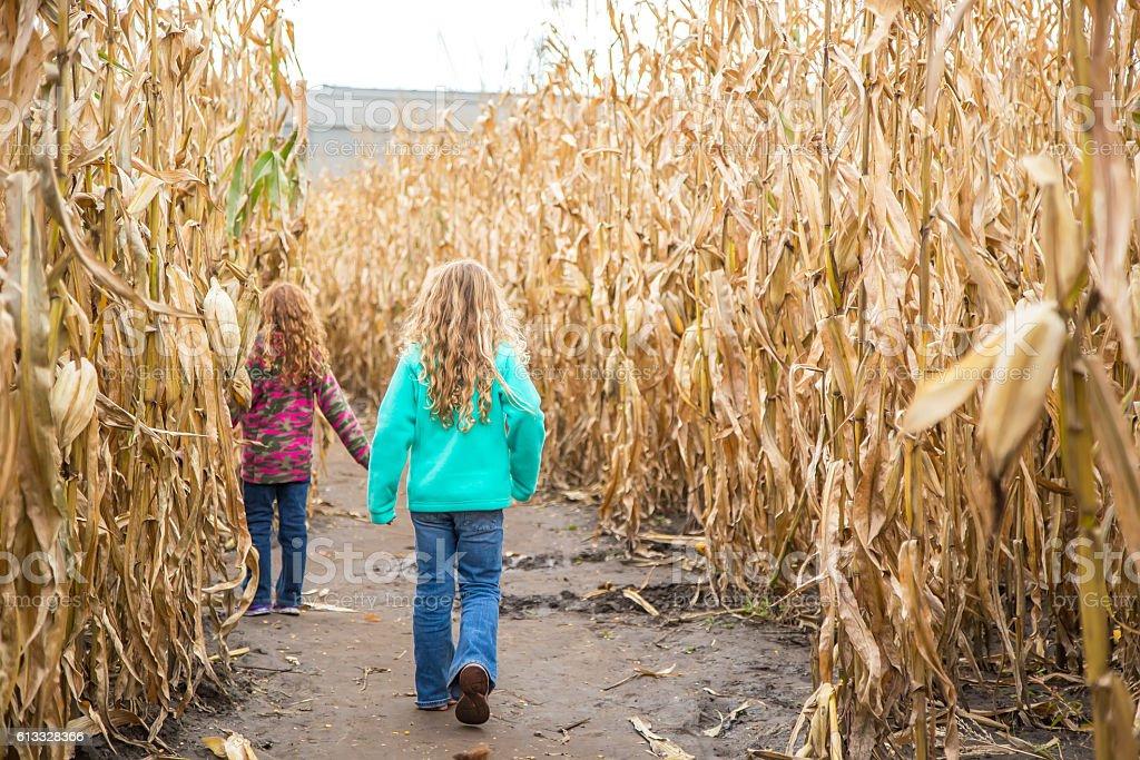 Two Girls Walking Through Corn Maze in Autumn stock photo