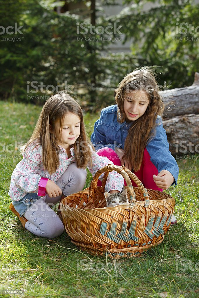 Two girls with kitty stock photo