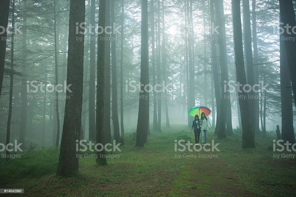 Two girls with umbrella walking together in tranquil nature landscape. stock photo