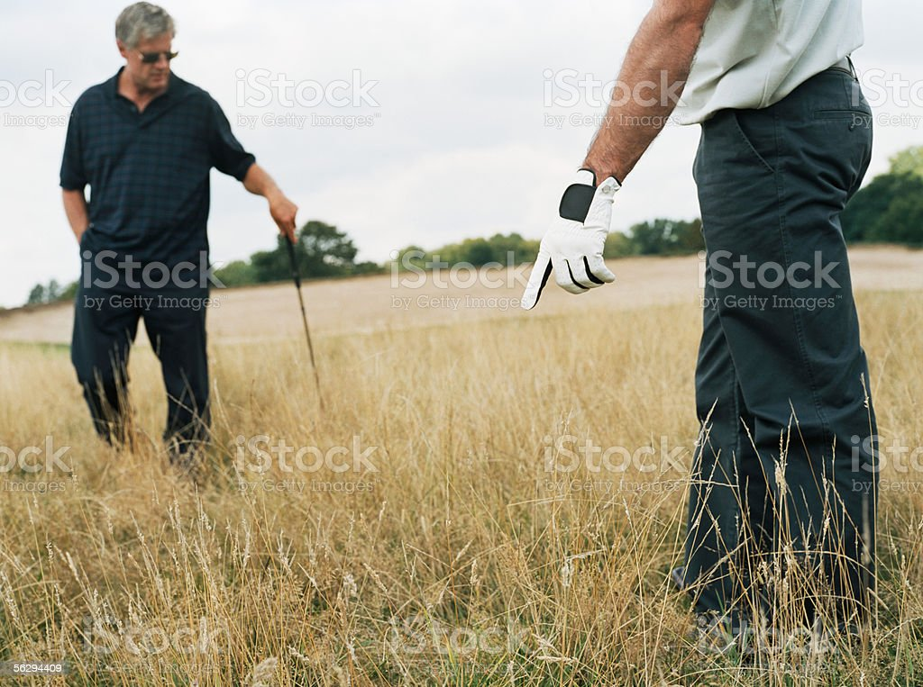 Two golfers in long grass royalty-free stock photo