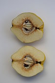 Two Halfs of a Quince.