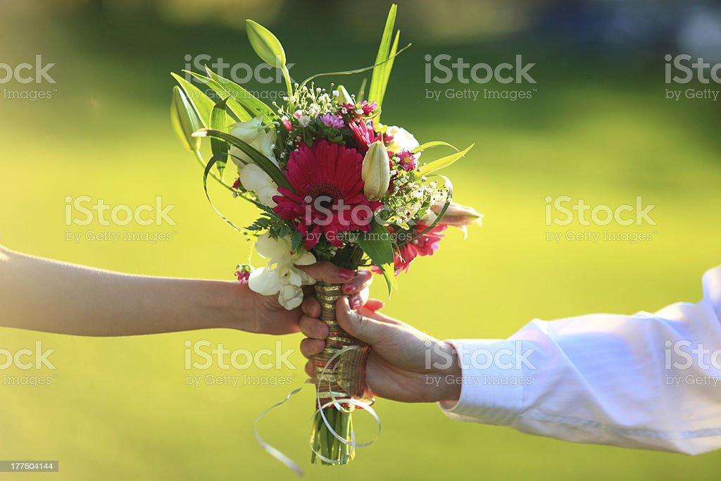 Two hands holding flowers royalty-free stock photo