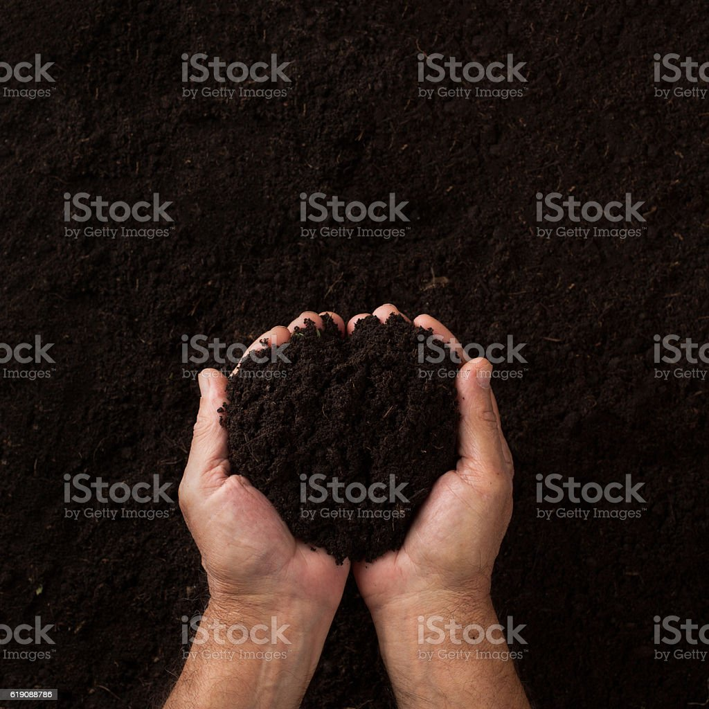 Two hands holding soil over dark texture stock photo