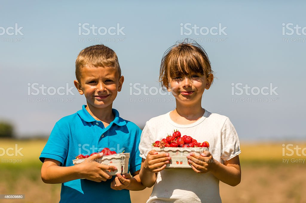 Two happy kids with boxes of strawberries stock photo