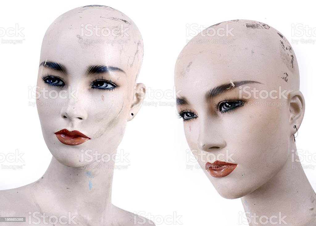 two heads royalty-free stock photo