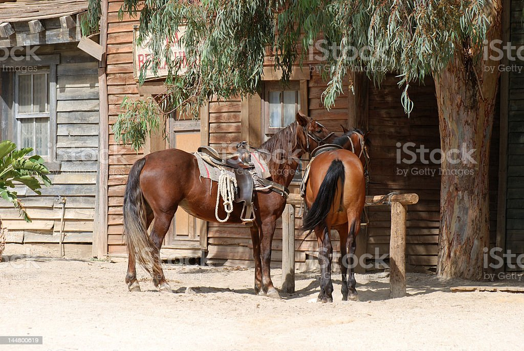 Two horses in old town royalty-free stock photo