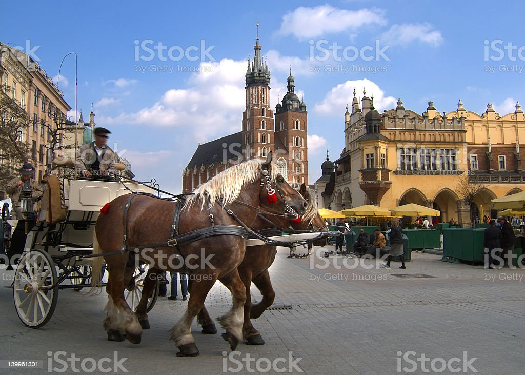 Two horses pulling a carriage in Krakow  stock photo