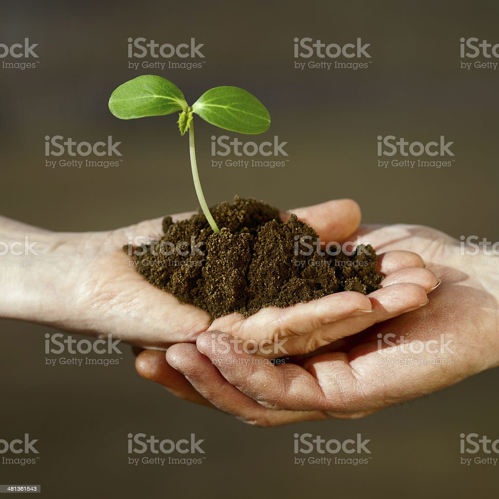 Two human hands stock photo