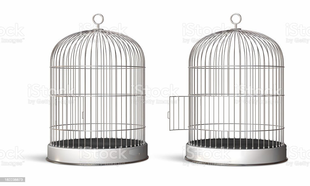 Two illustrated oval bird cages, one with the door opened stock photo