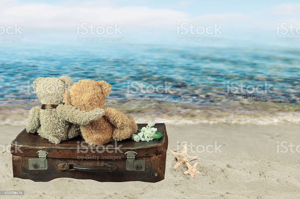 Two in love teddy bears sit on a suitcase. stock photo